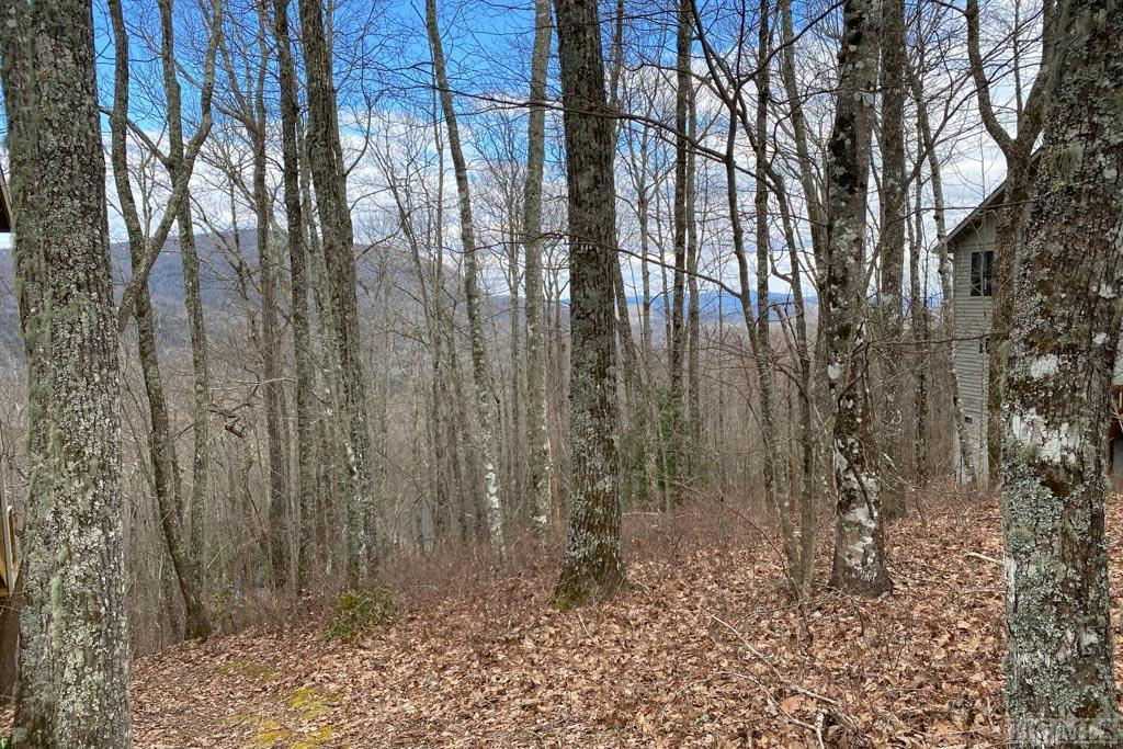Photo of home for sale at Lot 29 Flyaway Circle, Sapphire NC