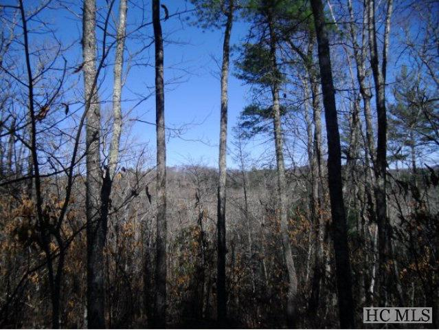 Photo of home for sale at Lot 103 Tanawha Drive, Cashiers NC