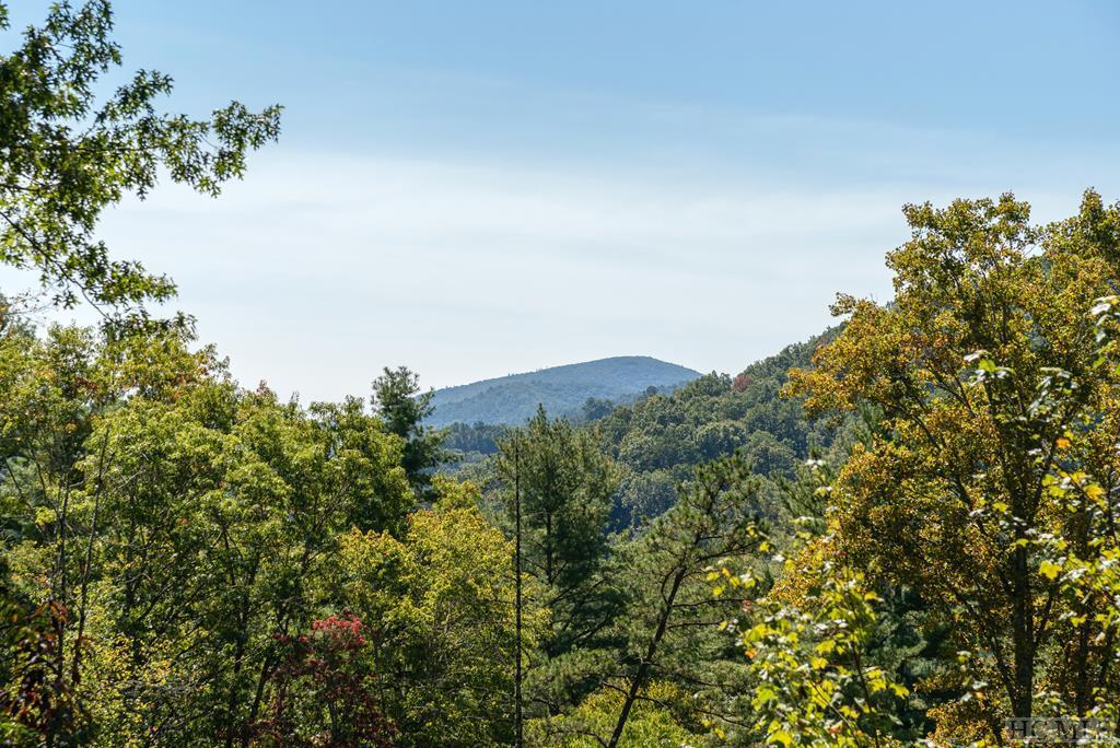 Photo of home for sale at 4201 Cullowhee Forest Road, Cullowhee NC