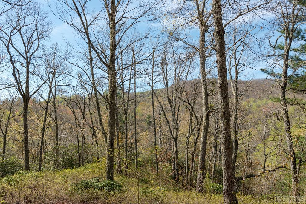 Photo of home for sale at Lot 1 Ridgemont Road, Glenville NC