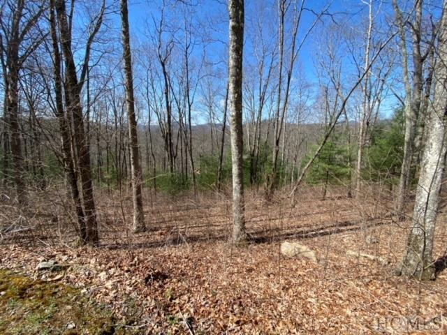 Photo of home for sale at Lot 56 Beechfern Drive, Glenville NC