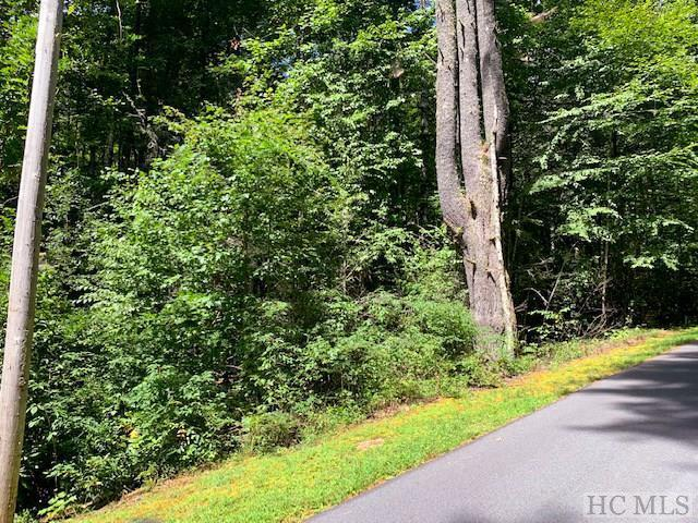 Photo of home for sale at Lot 156 Sunrise Court, Sapphire NC