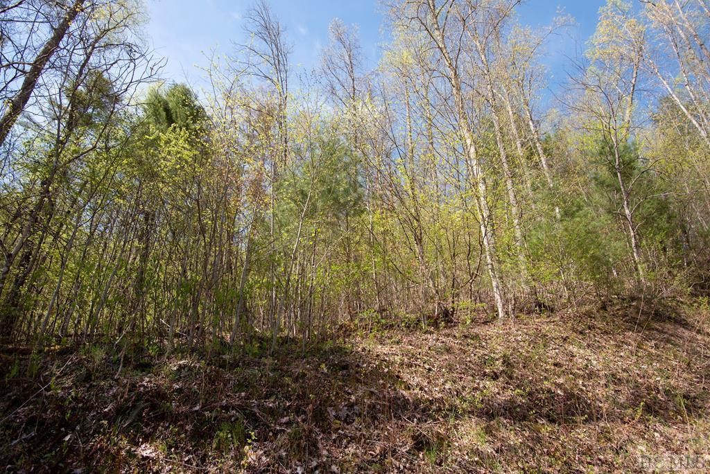 Photo of home for sale at Lot 86 Valley Overlook Drive, Glenville NC