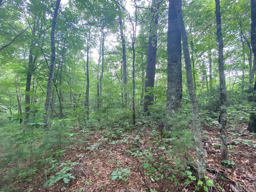 Photo of home for sale at 3 & 4 Gem Creek Road, Cullowhee NC