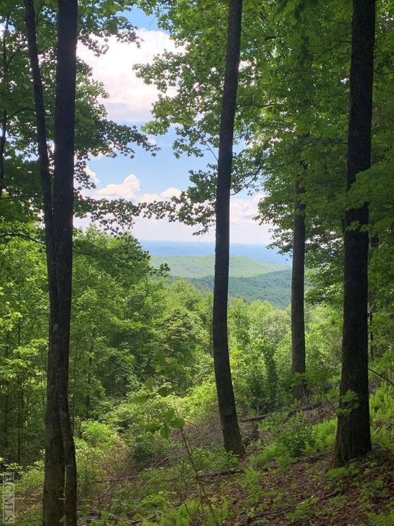 Photo of home for sale at Lot 9 Black Bear Court, Sapphire NC