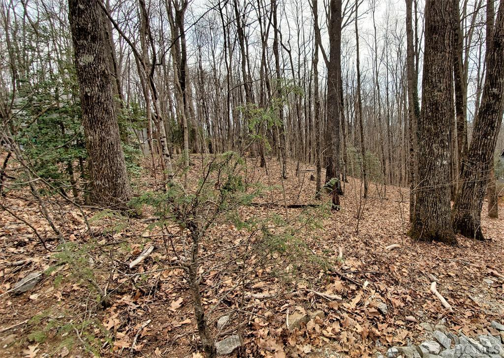 Photo of home for sale at Lot 52 Black Oak Drive, Sapphire NC