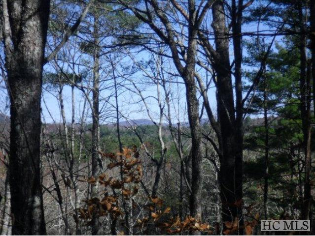 Photo of home for sale at Lot 104 Tanawha Drive, Cashiers NC