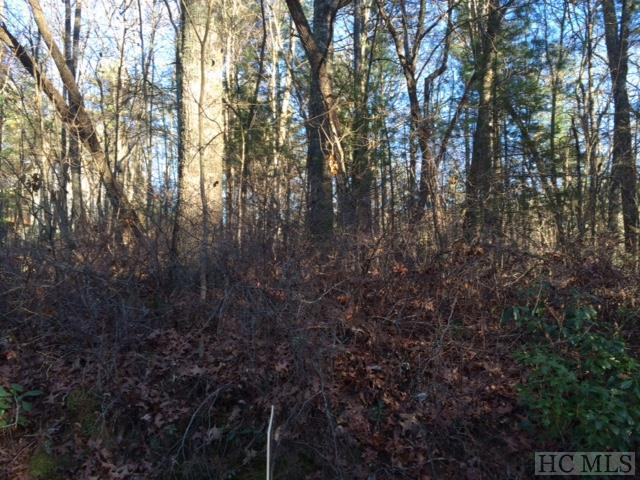 Photo of home for sale at Lot 67 Gold Creek Road, Sapphire NC