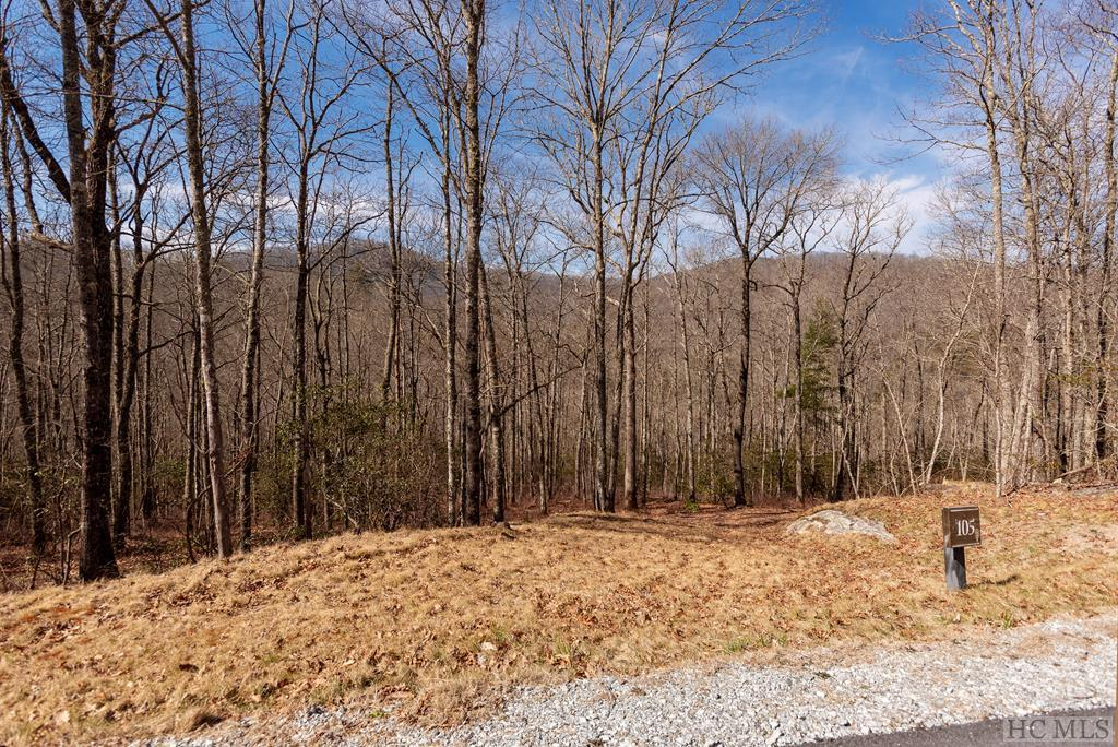 Photo of home for sale at Lot 105 Crippled Oak Trail, Glenville NC