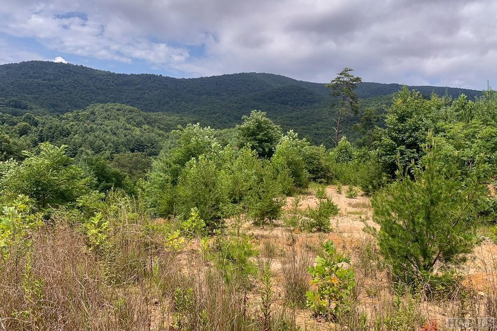 Photo of home for sale at 145 Hwy 281, Tuckasegee NC