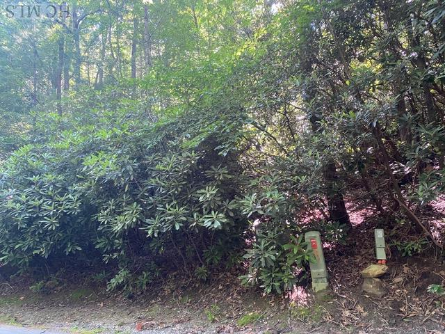 Photo of home for sale at Lot 10 Gold Creek Road, Sapphire NC