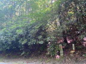 Property for sale at Lot 10 Gold Creek Road, Sapphire,  North Carolina 28774