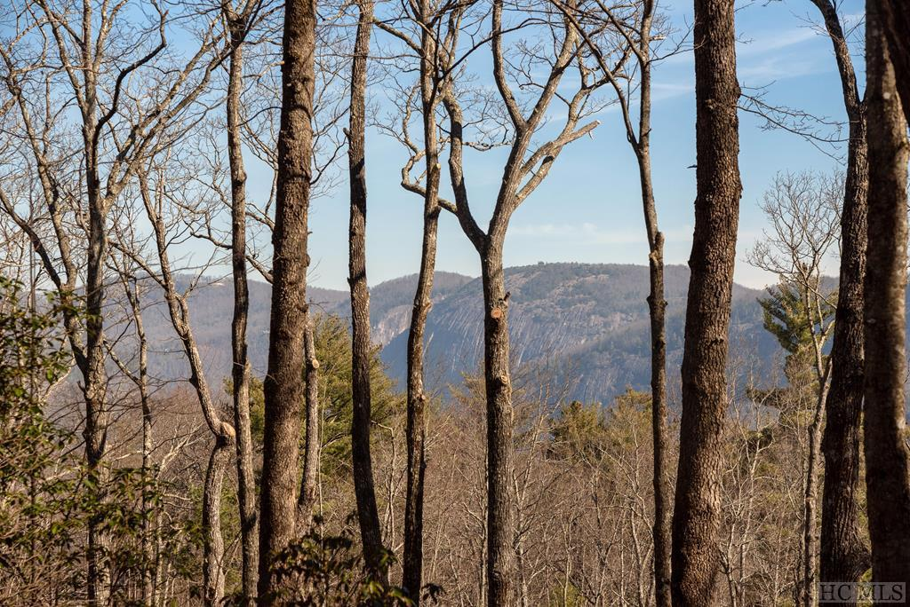 Photo of home for sale at Lot 32 East Ridge Road, Cashiers NC