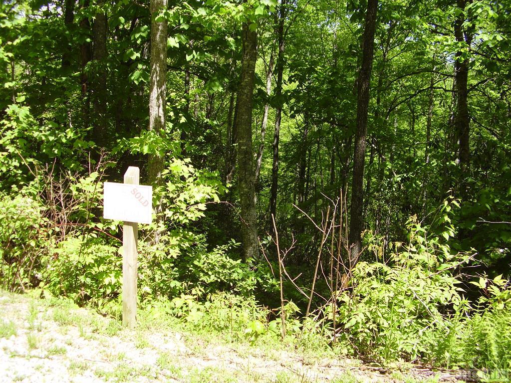 Photo of home for sale at Lot 62 Compass Rose Way, Cullowhee NC