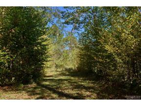 Property for sale at Lot 47 Pilot Knob Road, Glenville,  North Carolina 28736