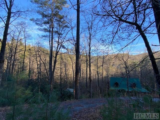 Photo of home for sale at D5 & A5 Sandy Branch Road, Cashiers NC
