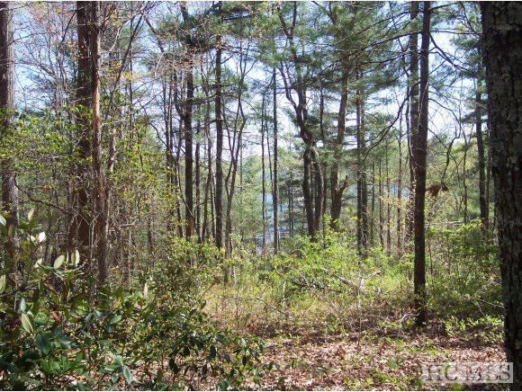 Photo of home for sale at Lot 2 Panther Ridge Road, Lake Toxaway NC