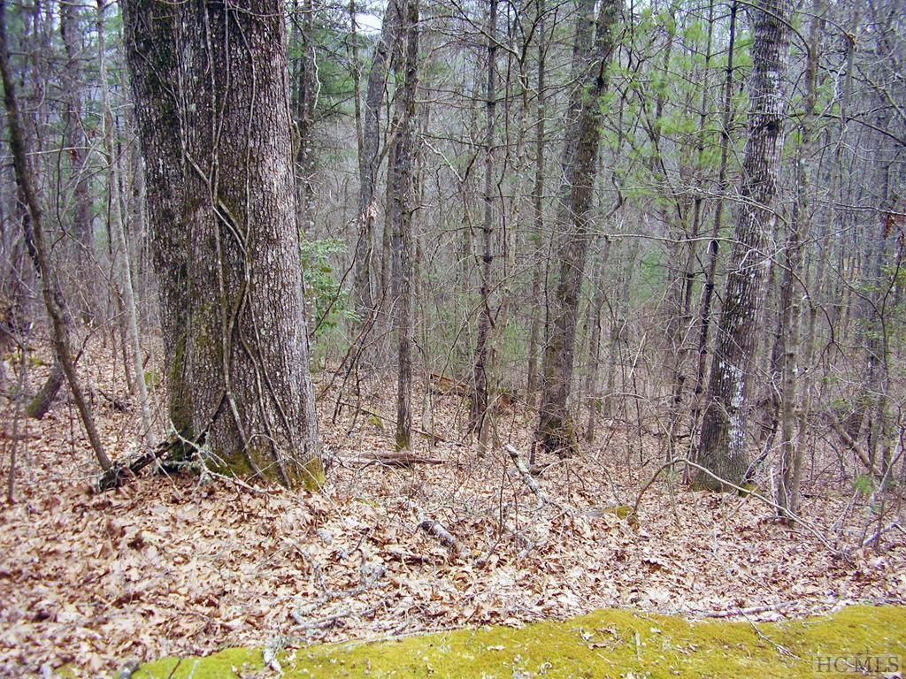 Photo of home for sale at Lot 5 No End Circle, Cullowhee NC