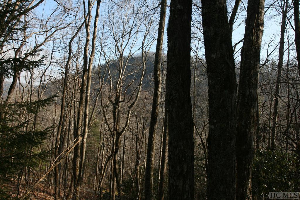 Photo of home for sale at TR2 Sassafras Ridge, Sapphire NC
