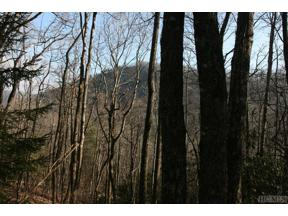 Property for sale at TR2 Sassafras Ridge, Sapphire,  North Carolina 28774