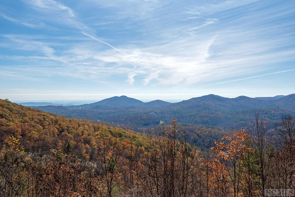 Photo of home for sale at 1506 Tower Road, Sapphire NC
