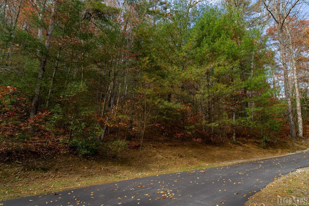 Photo of home for sale at Lot 31 Summer Hill Lane, Cullowhee NC