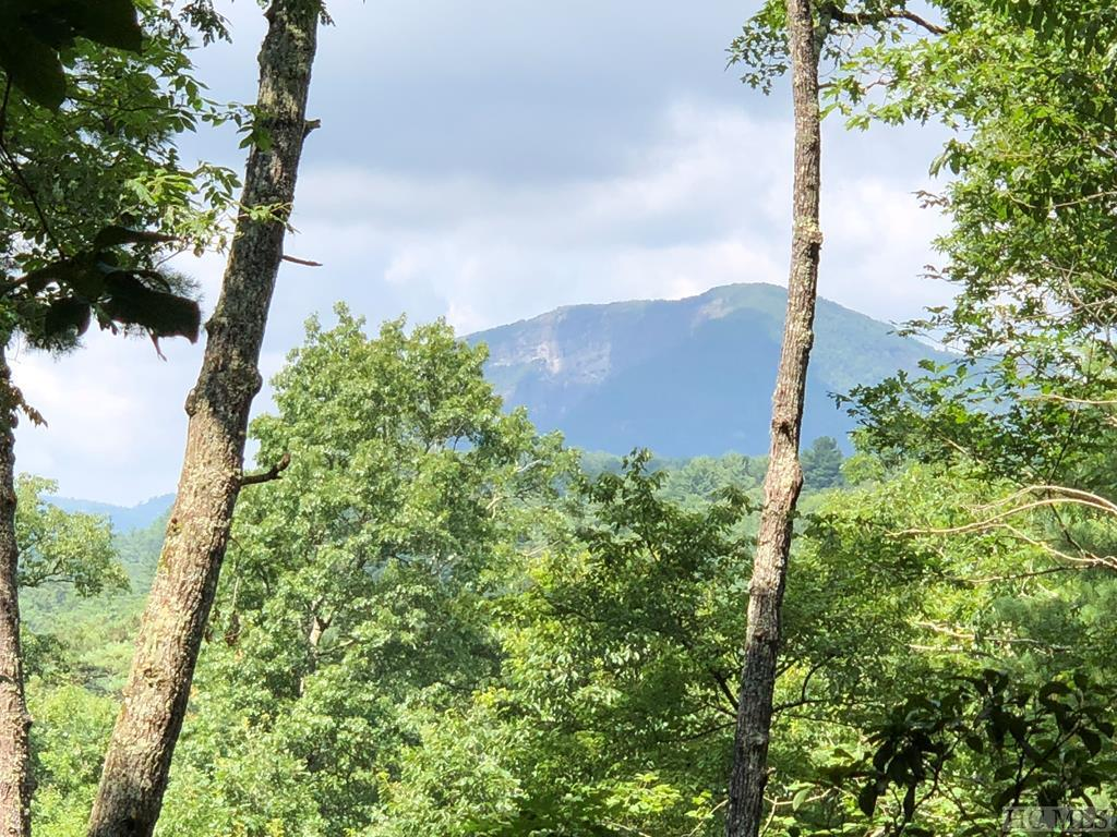 Photo of home for sale at E-5 Chimney Top Tr., Cashiers NC