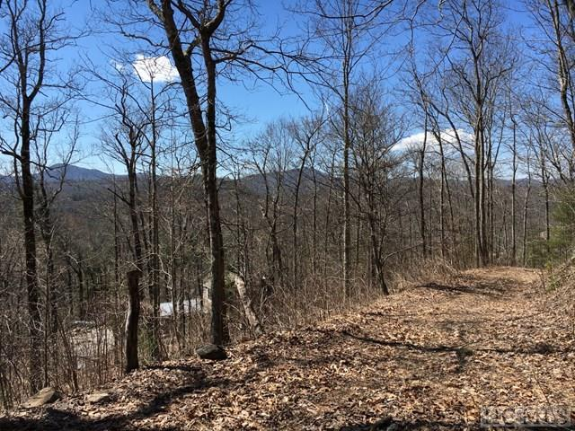 Photo of home for sale at Lt 17,18 Birch Creek Trail, Cashiers NC