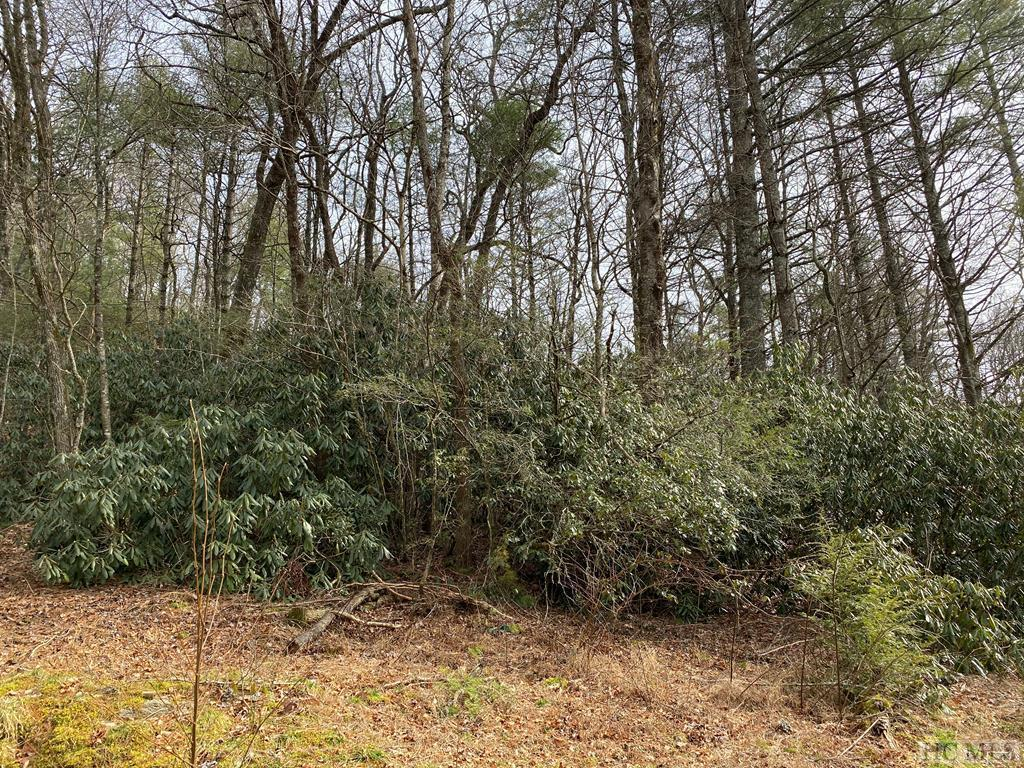 Photo of home for sale at 0 Silver Run Road, Cashiers NC