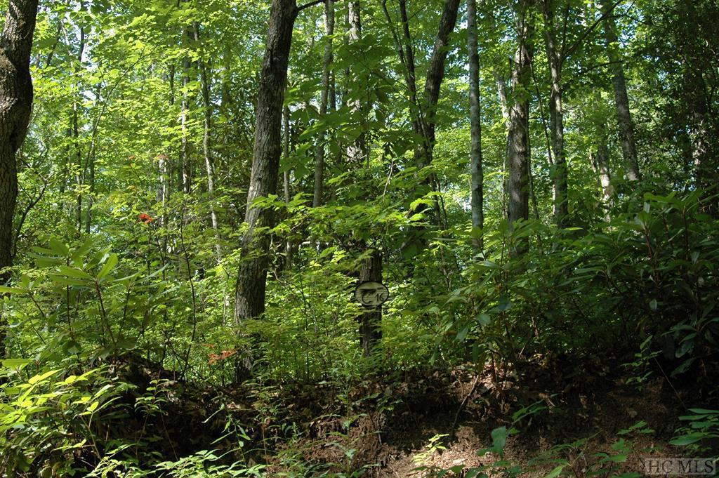 Photo of home for sale at Lot 16 Zeb Alley Road, Cashiers NC