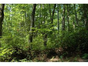 Property for sale at Lot 16 Zeb Alley Road, Cashiers,  North Carolina 28717