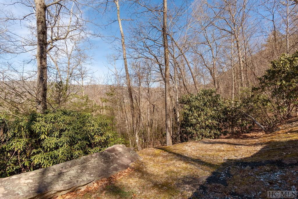 Photo of home for sale at 595 Pine Forest Road, Sapphire NC