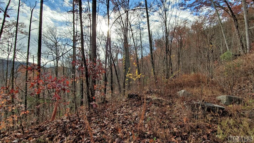 Photo of home for sale at Lot 193 Elk Hair Drive, Cullowhee NC