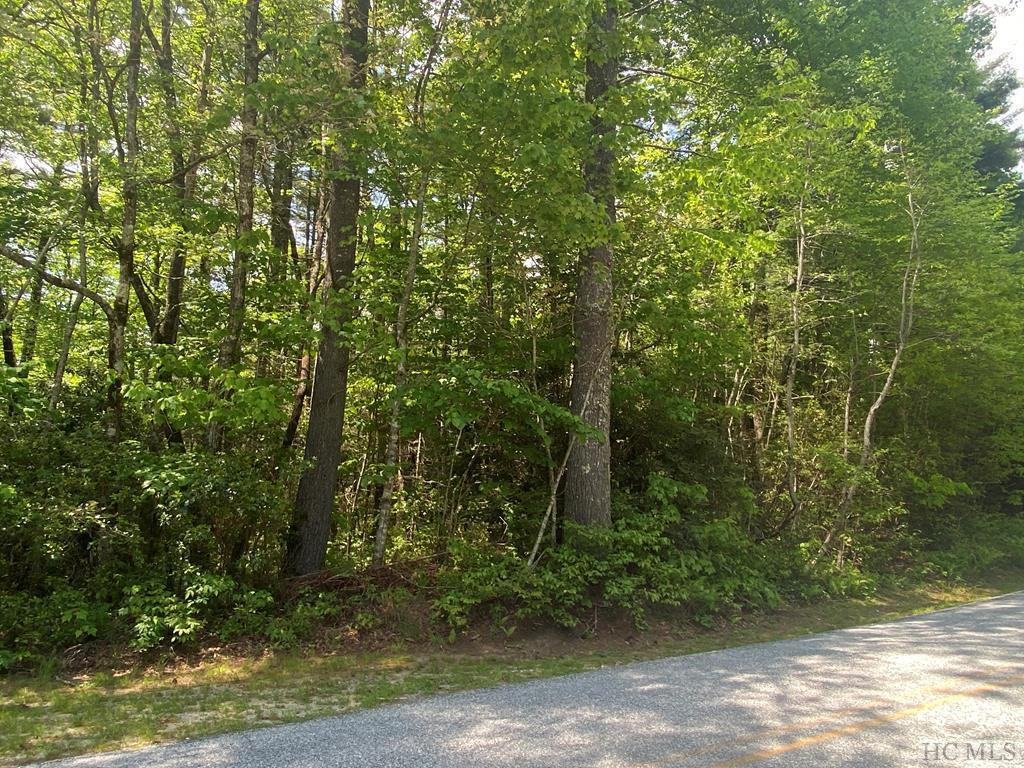 Photo of home for sale at Lot 114 Upper Whitewater Drive, Sapphire NC