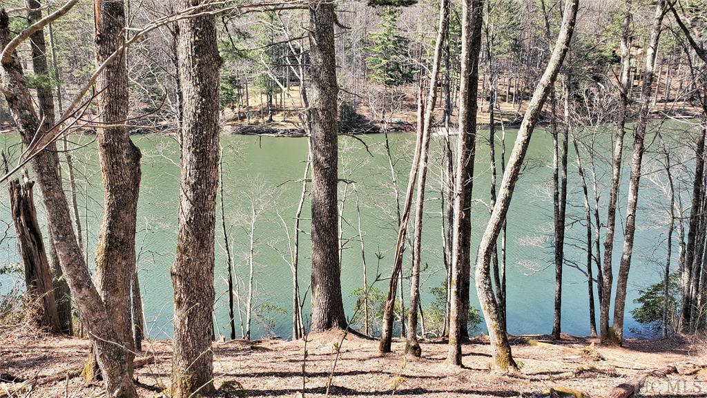 Photo of home for sale at 61 & 61A Wayside Lane, Cullowhee NC