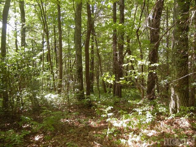 Photo of home for sale at Lot R-43 Ox Lock Road, Cashiers NC