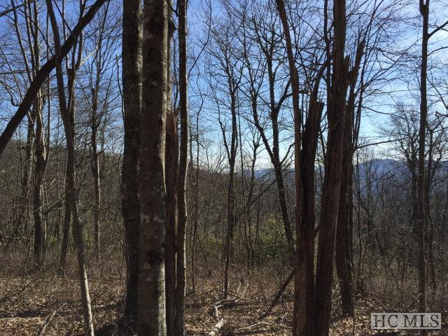 Photo of home for sale at Parcel A Tower Road, Sapphire NC