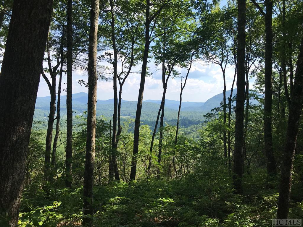 Photo of home for sale at 63 Rambouillet Road, Cashiers NC