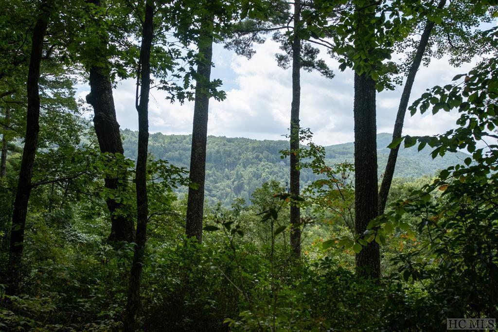 Photo of home for sale at Lot 4 Gorge Trail Road, Cashiers NC