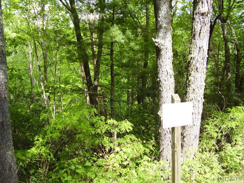 Photo of home for sale at Lot 64 Compass Rose Way, Cullowhee NC