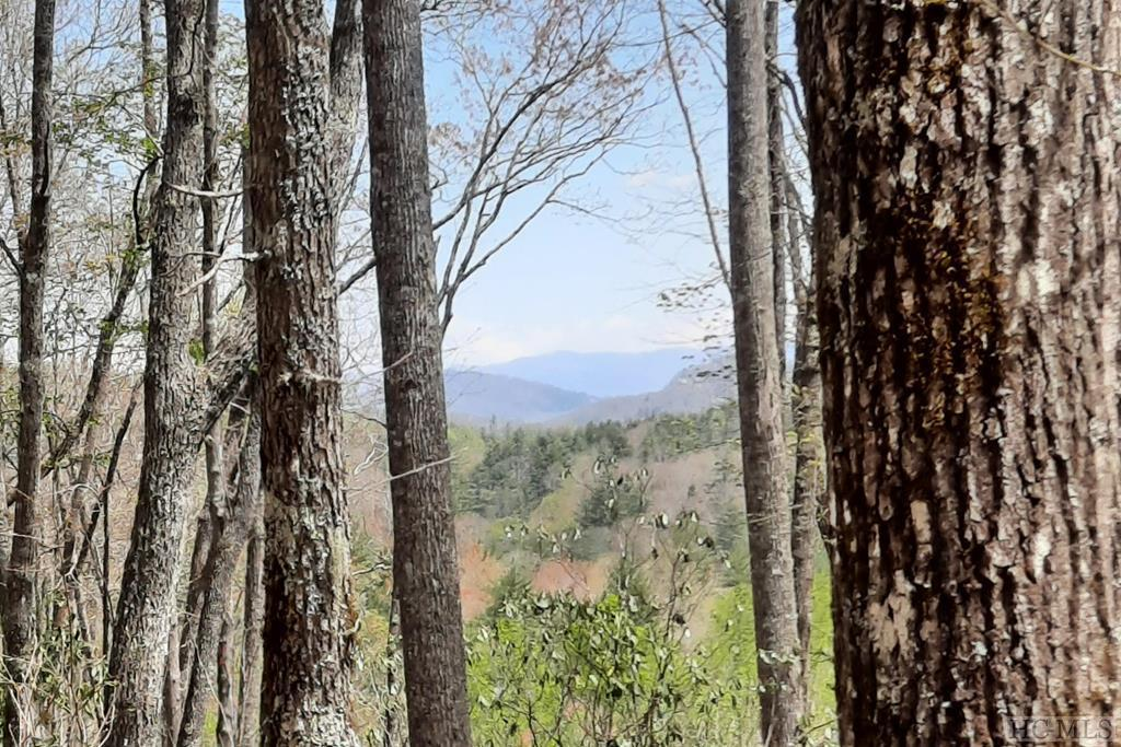 Photo of home for sale at Lot 229 Highlands Cove Drive, Highlands NC