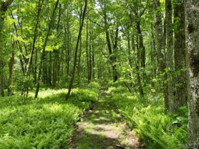 Property for sale at Lot 50A Maidenhaire Lane, Sapphire,  North Carolina 28774