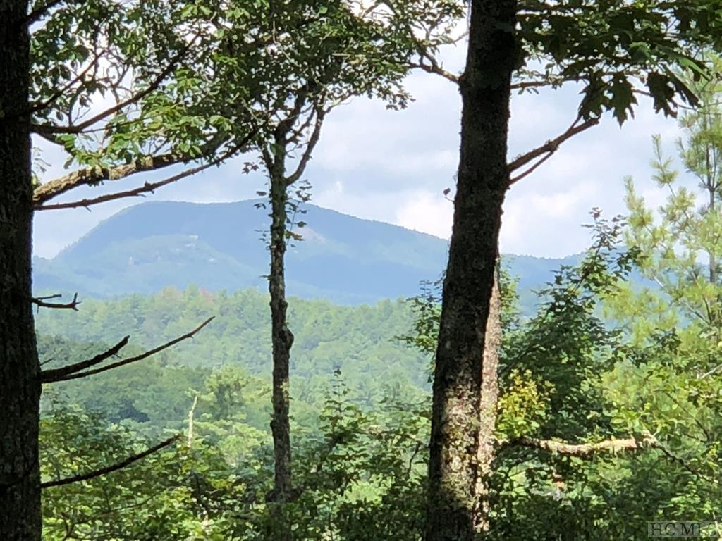 Photo of home for sale at Lot S12 Cherokee Trace, Cashiers NC