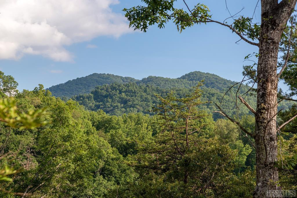 Photo of home for sale at Lot 50 Amberleaf Way, Cullowhee NC