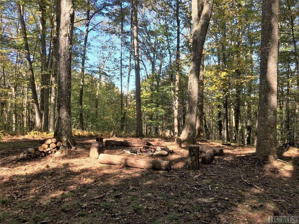 Photo of home for sale at Lot 69D Rye Mountain Drive, Glenville NC