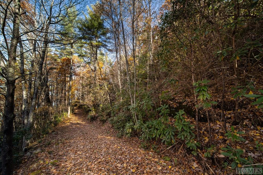 Photo of home for sale at Lot 1A Fenley Forest Trail, Cullowhee NC