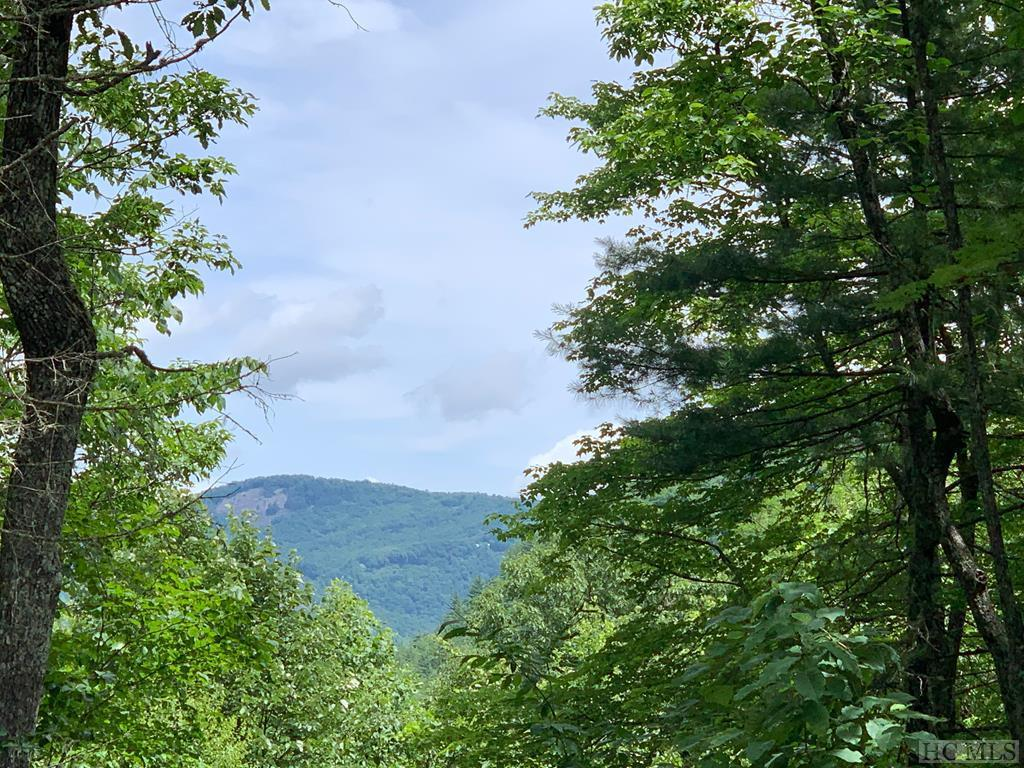 Photo of home for sale at Lot 49,  Rocky Top Drive, Cashiers NC
