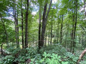 Property for sale at Lot 1 Glenshore Drive, Cullowhee,  North Carolina 28723