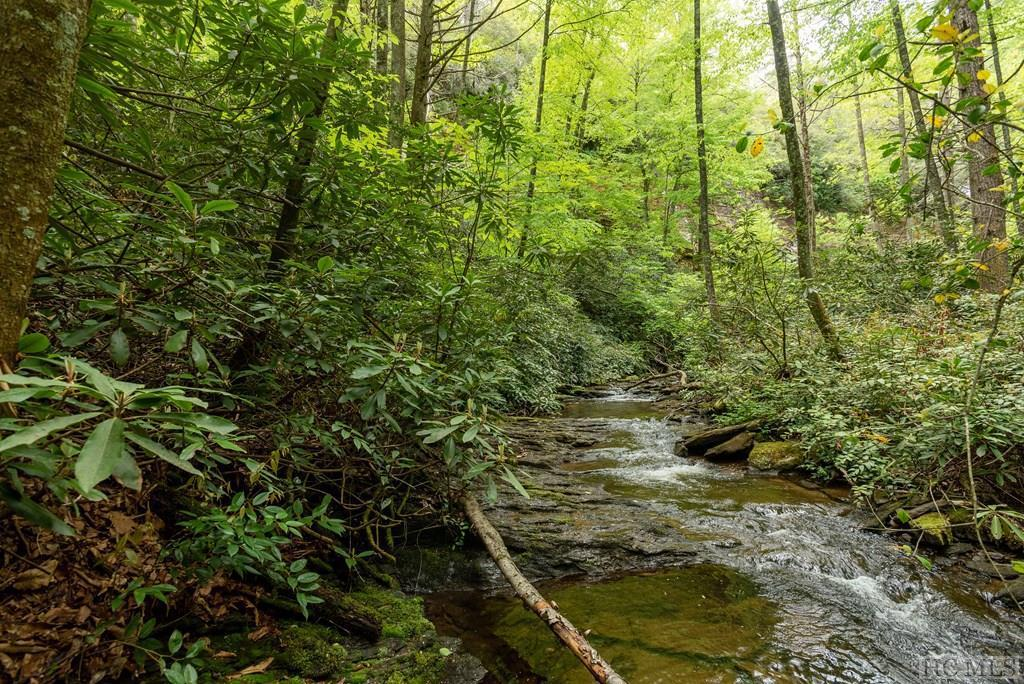 Photo of home for sale at Lot 136 Rockhouse Falls Lane, Sapphire NC