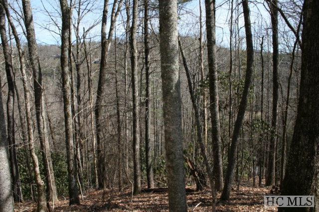 Photo of home for sale at R-49 Katydid Rd, Cashiers NC